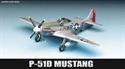 Acadamy 1/72 P-51D Mustang