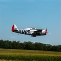"Hangar9 P-47D Thunderbolt 20cc ARF 67"""