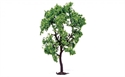 Hornby Pear Tree 7.5cm Profi